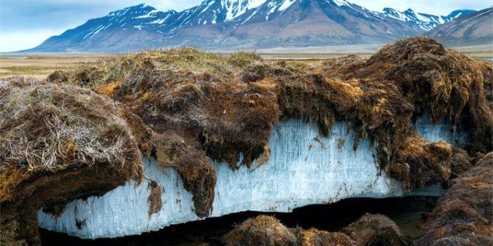 «Углеродная бомба» Арктики взорвет Парижское соглашение