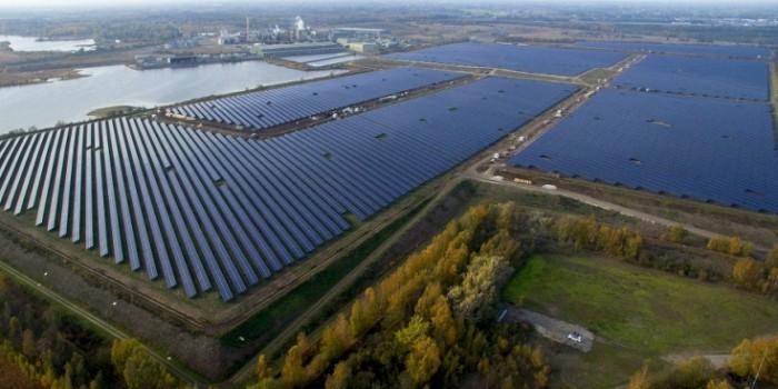 Успешный краудфандинг для солнечной фермы в Нидерландах