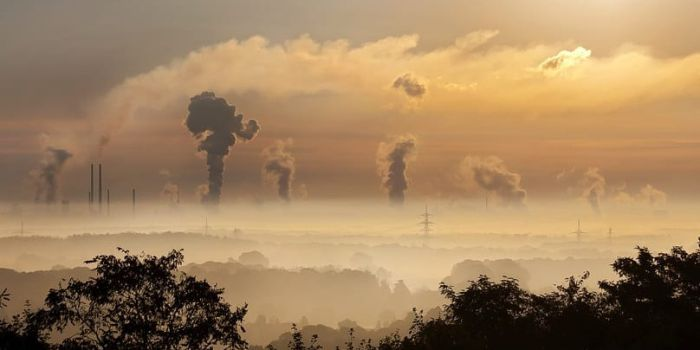 Водородное топливо и электричество из углекислого газа