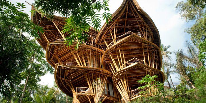 Взаимосвязь теплопроводности со структурой бамбука