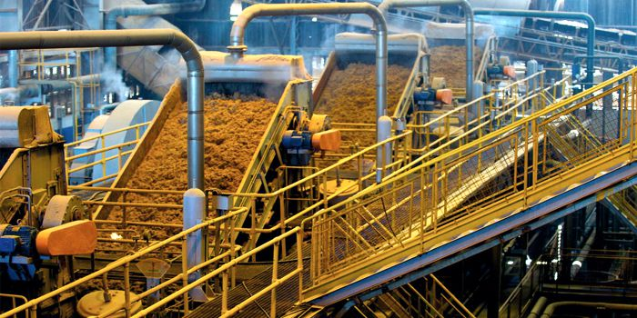 Производство биотоплива бактериями из не пищевого сырья