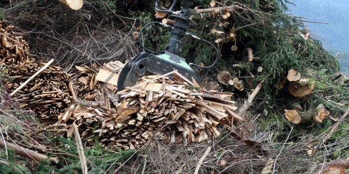 Проточный топливный элемент на растительной биомассе