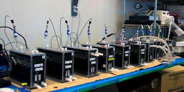 Генерация электричества микроорганизмами из отходов