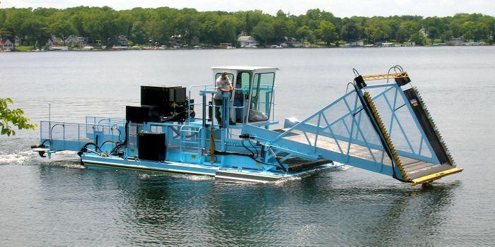 Трудности при производстве биотоплива из водорослей