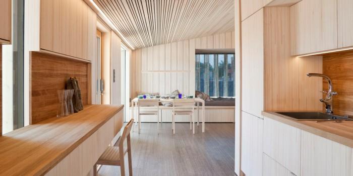 Энергонезависимые дома и отделочные материалы без химикатов из дерева