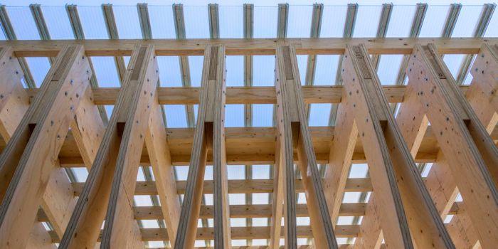 Деревянное строительство снизит на половину выбросы углерода в Европе