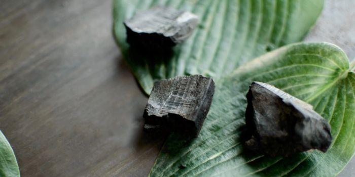 Биоуголь (биочар) снижает расходы на полив растений на 50%