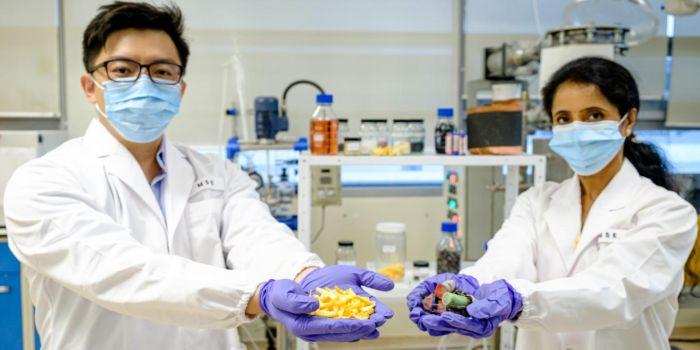 Использование фруктовой кожуры для переработки литий-ионных батарей