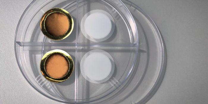 Управляемая мембрана для удаления углекислого газа из выхлопных газов